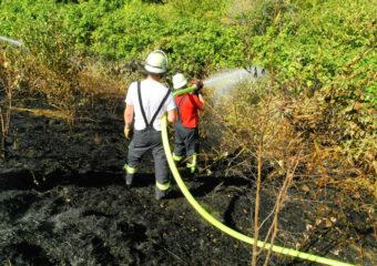 Gemeldeter PKW Brand und Flächenbrand fordern die Feuerwehr Rosbach